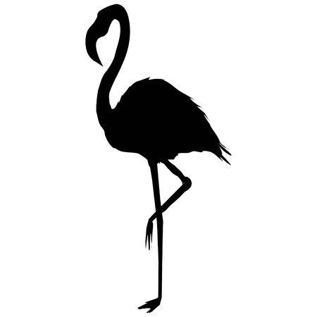 Illustration pour Flamingo silhouette - image libre de droit