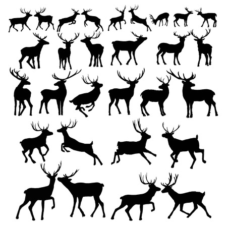 Illustration for Deer silhouette isolated on white background. Vector illustration. - Royalty Free Image