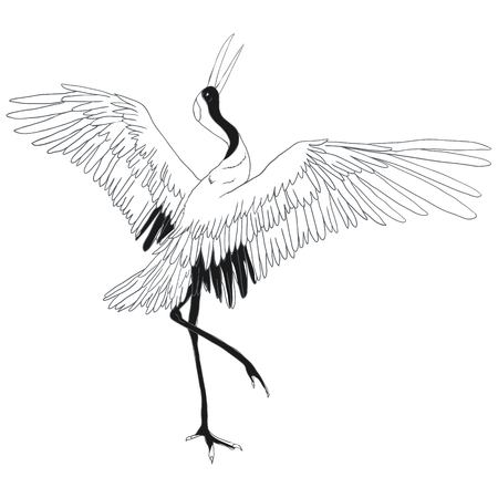 Illustration pour Crane vector illustration - image libre de droit