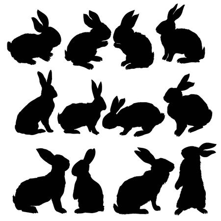Ilustración de Silhouette rabbit, vector illustration, animal, easter, graphic hare icon isolated nature symbol bunny black - Imagen libre de derechos