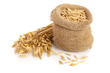 Photo for oat spike with grains in bag isolated on white background - Royalty Free Image