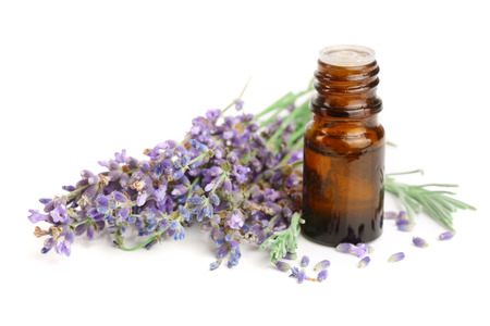 Photo pour Bottle with aroma oil and lavender flowers isolated on white background - image libre de droit