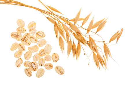 Photo for oat spike with oat flakes isolated on white background. Top view - Royalty Free Image