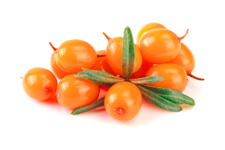 Photo pour Sea buckthorn. Fresh ripe berry with leaves isolated on white background macro - image libre de droit