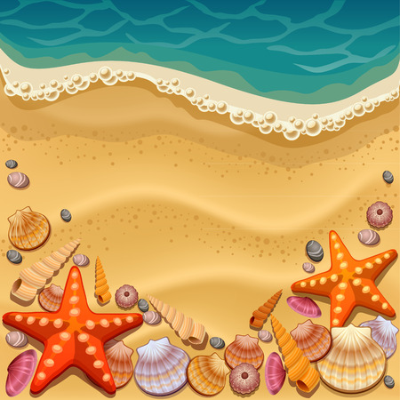 Illustration for shells on the beach - Royalty Free Image