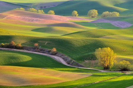 Photo pour The rolling hills farmland in Palouse Washington - image libre de droit