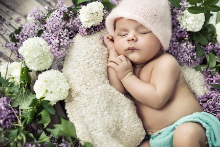Photo pour cute boy sleeping among the fragrant flowers - image libre de droit
