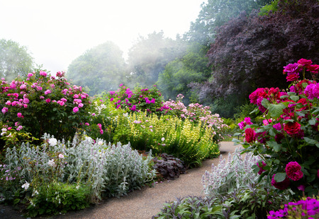 Photo pour Art flowers in the morning in an English park - image libre de droit