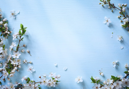 Photo for art Spring floral border background with white blossom - Royalty Free Image