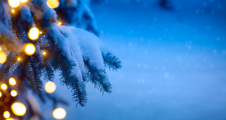 Foto per christmas tree light; blue snow background - Immagine Royalty Free