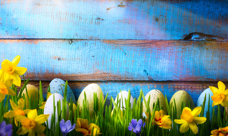 Photo pour Easter Background with easter eggs and spring flowers on green grass - image libre de droit