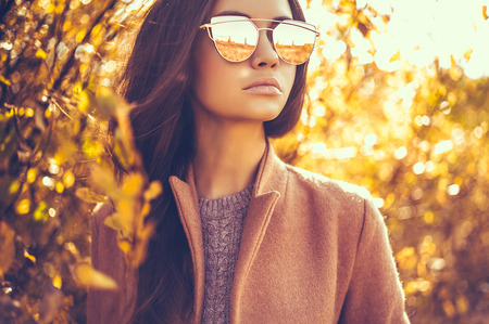 Photo pour Outdoor fashion photo of young beautiful lady surrounded autumn leaves - image libre de droit