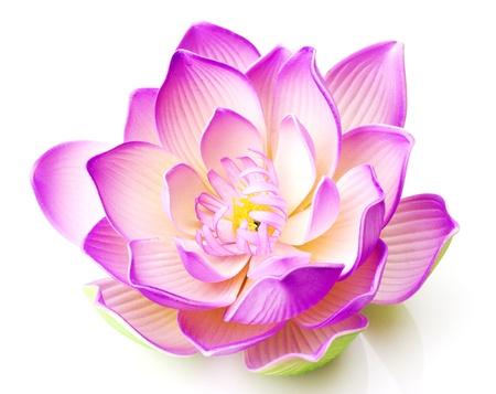 Photo pour Lotus flower  - image libre de droit