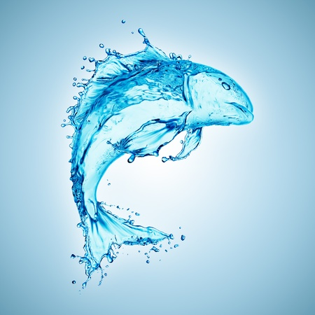 water fish splash isolated on white background