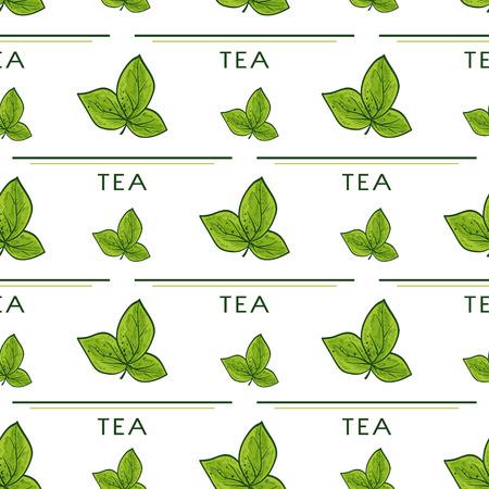 Ilustración de Tea. Branch, leaves, text. Background, wallpaper, seamless, texture. Sketch. - Imagen libre de derechos