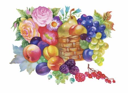 Colorful summer ripe fruits basket watercolor illustration.