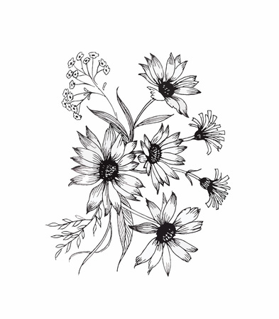 Illustration pour Beautiful monochrome, black and white flower isolated. Hand-drawn contour lines and strokes - image libre de droit
