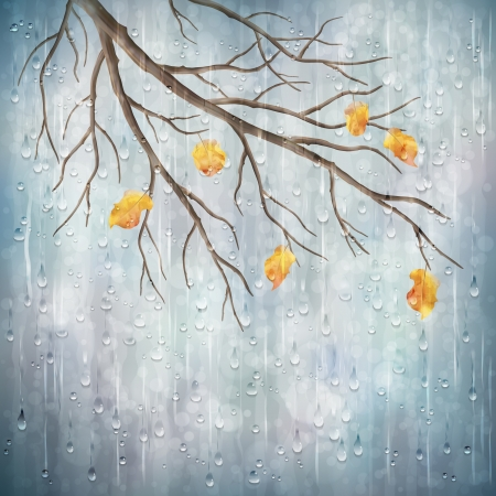 Autumn season rainy weather artistic design  Tree branch, yellow leaves, transparent water drops on foggy gray blur natural wallpaper background  Beautiful wet autumn fall realistic vector landscape