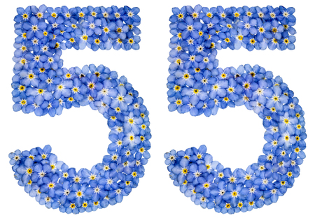 Photo pour Arabic numeral 55, fifty five, from blue forget-me-not flowers, isolated on white background - image libre de droit