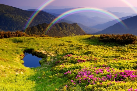 Photo pour Summer landscape in mountains with Flowers, a rainbow and lake - image libre de droit