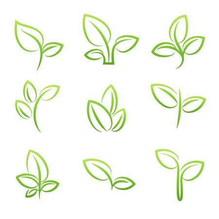 Illustration pour Leaf simbol, Set of green leaves design elements - image libre de droit