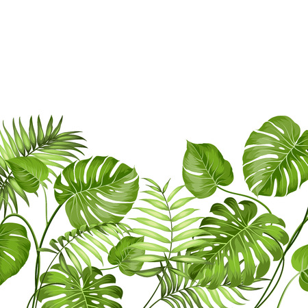 Illustration pour Tropical leaves design for text card. Vector illustration. - image libre de droit