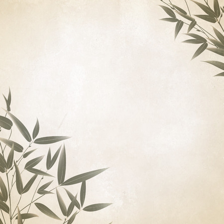 Illustration for Chinese bamboo painted with a brush on the old paper. illustration. - Royalty Free Image