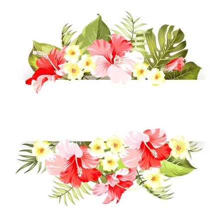 Illustration pour Tropical flower frame with place for invitation card text. Happy holiday card with floral garland. Summer holiday invitation card with floral garland with text place. Vector illustration. - image libre de droit