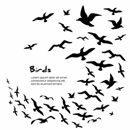Illustration pour Silhouettes of black flying birds. Vector illustration. - image libre de droit