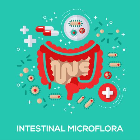 Illustration pour Intestinal microflora flat icons concept. Vector illustration. Intestine and bacterium, pills and tablet for proper digestion. - image libre de droit