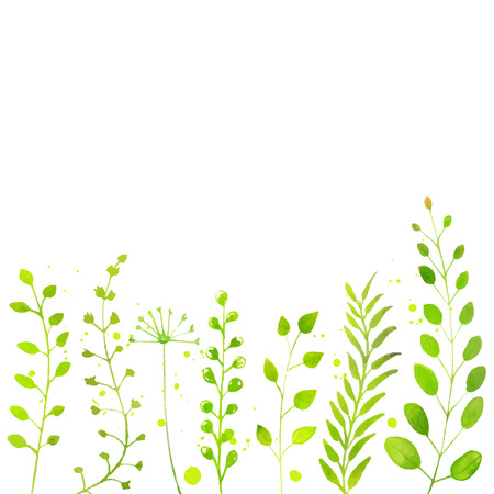 Illustration pour White spring background with hand painted watercolor green plants, twigs and flowers. Vector backdrop for seasonal sales, promo, announcements, etc. - image libre de droit