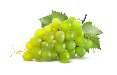Photo for Green grapes horizontal and leaves isolated on white background as package design element - Royalty Free Image