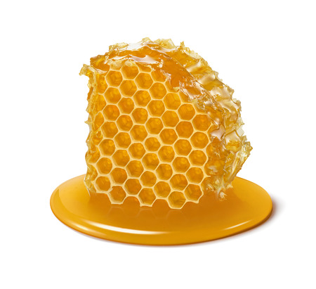 Photo for Honeycomb. Honey cell slice isolated on white background. Package design element with clipping path - Royalty Free Image