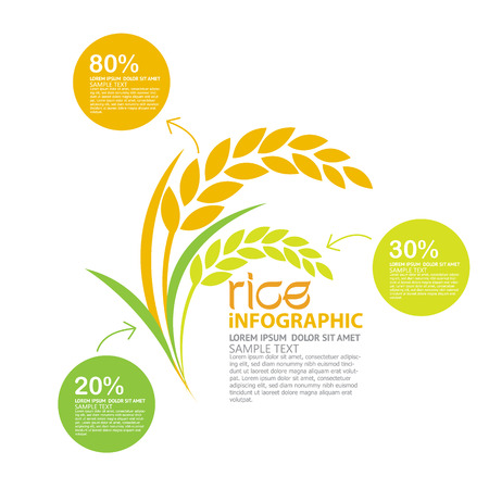 Illustration for rice vector - Royalty Free Image