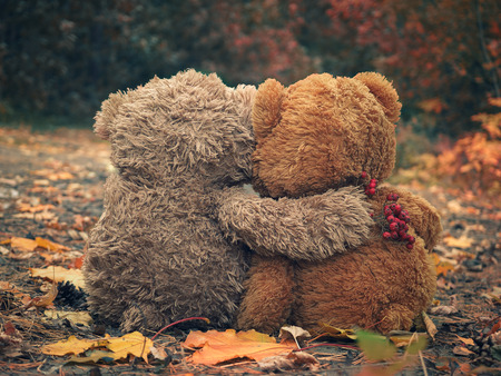 Photo pour Two Teddy bear hugging each other and looking at the autumn forest - image libre de droit
