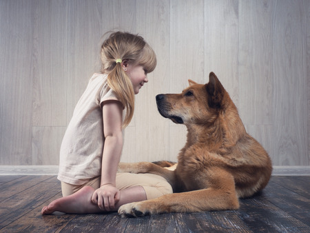 Photo pour A wonderful little girl and a huge dog communicate with each other. The dog is terrible, but kind. An animal loves a child. - image libre de droit