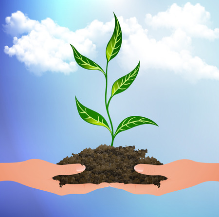 Illustration pour The plant sprouted from the clods on the palms vector art illustration. - image libre de droit
