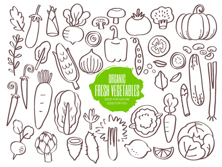 Set of hand drawn vegetables doodles