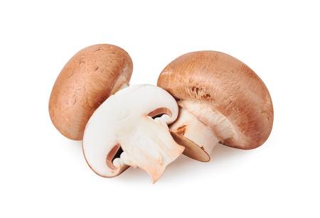 Photo pour Champignon Mushroom isolated on white background - image libre de droit
