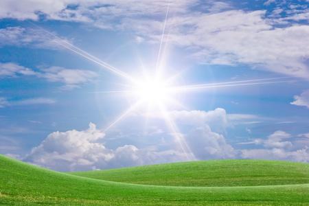 Sun and grass.
