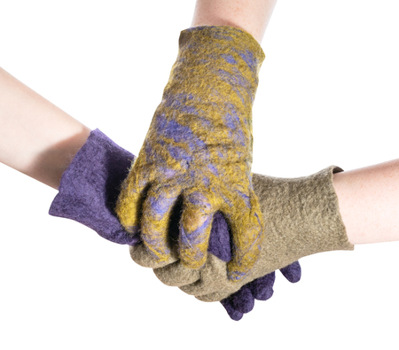 Photo for gloved hand covers handshake of two hands in colored gloves isolated on white background - Royalty Free Image