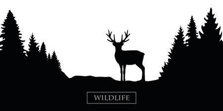 Illustration pour wildlife reindeer silhouette forest landscape black and white vector illustration EPS10 - image libre de droit