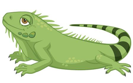 Ilustración de Iguana cartoon illustration on white background. - Imagen libre de derechos