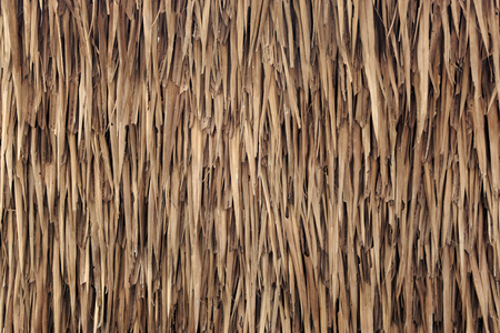 Photo pour Wall of house made from nipa palm leaves texture - image libre de droit