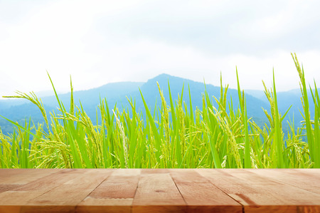 Foto de Wood table top on green rice field and mountain background - Imagen libre de derechos