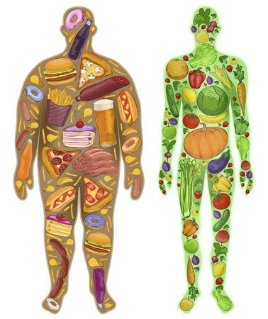 Illustrazione per Human, thin, fat. Nutrition, food. New. illustration - Immagini Royalty Free