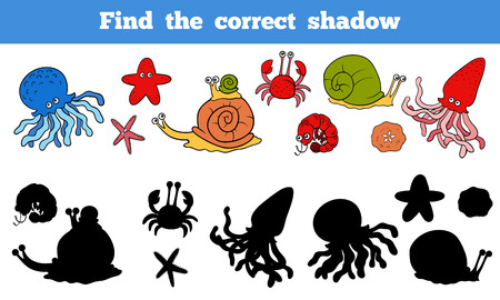 Illustration for Game for children: Find the correct shadow (sea life, fish, octopus, snail, stars, crab) - Royalty Free Image