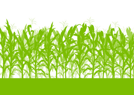 Illustration pour Corn field vector background ecology green concept for poster - image libre de droit