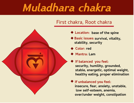 Illustration for Muladhara chakra infographic. First, root chakra symbol description and features. Information for learning kundalini yoga - Royalty Free Image