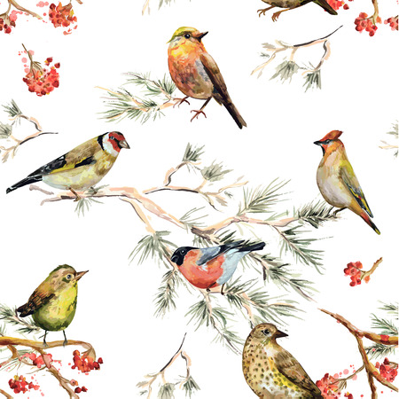 Illustration pour seamless texture of forest birds. watercolor painting - image libre de droit